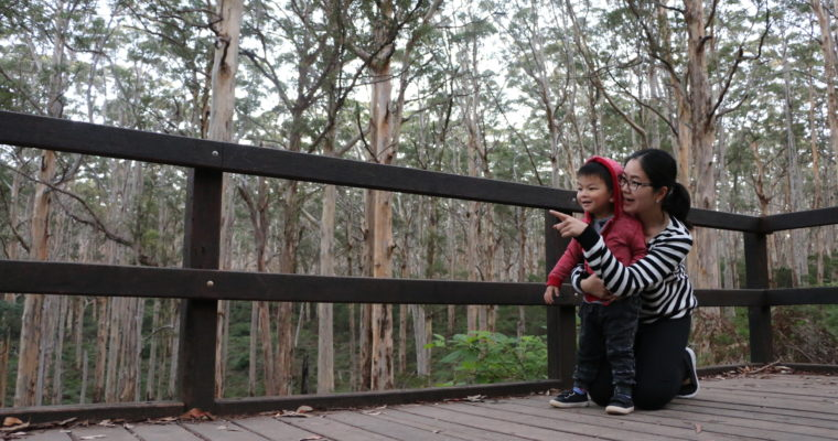13 of the Best Tips for Travel with Toddlers